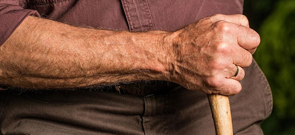 Understanding Arthritis – The Arthritis Society