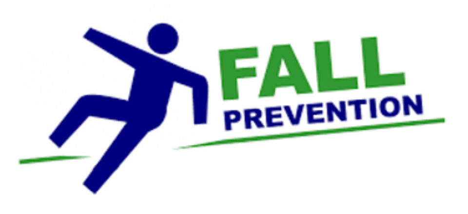 Fall prevention among seniors: Examining the effectiveness and efficiency